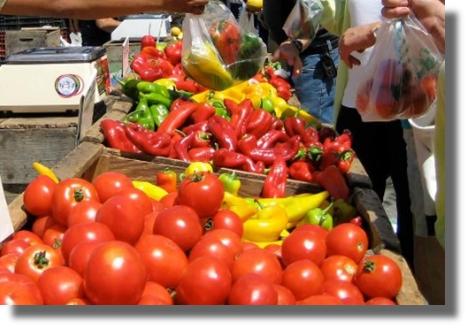 davie county farmer's market