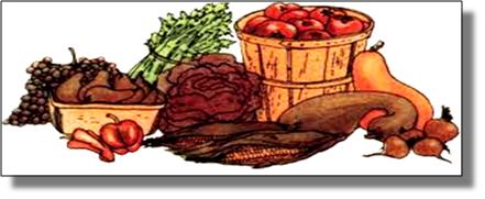 Mocksville-Farmers-Market