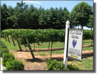 Davie County Vineyards - Garden Gate