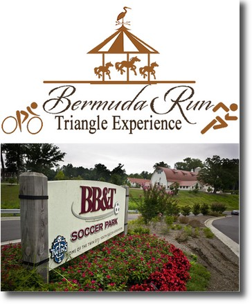 Bermuda Run Triangle3