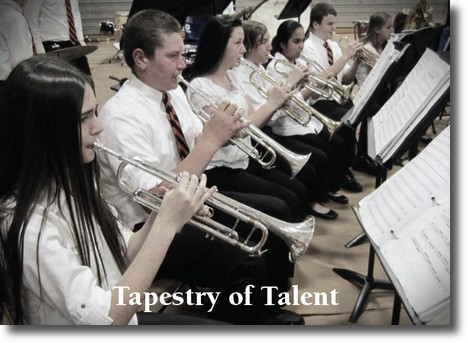 Ashley for the Arts - A Tapestry ofTalent