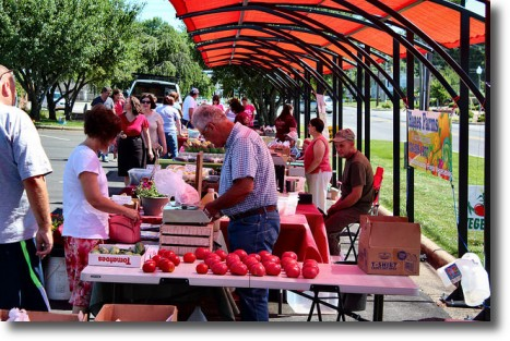 Mocksville Farmers Market