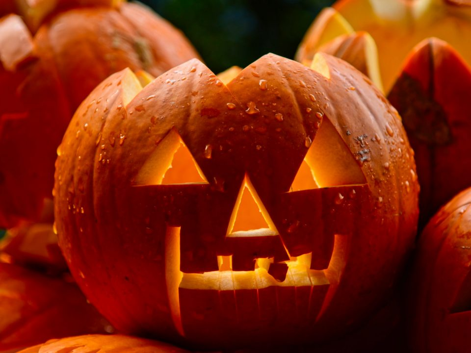 Davie County Recreation and Parks is offering a safe and family-fun way for you to celebrate Halloween this year. From October 24th-29th, there are time slots for you to carve or paint a pumpkin at the Davie County Community Park. Then on October 31st you can come back to see your pumpkins lighting the way on Jack-O-Lantern Trail.